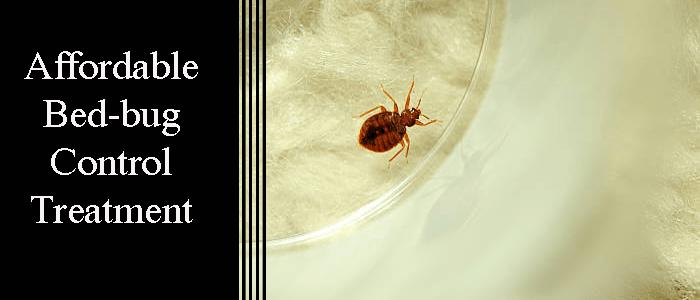 Bed Bug Control Treatment Pymble