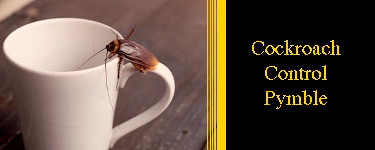 Cockroach Control Pymble