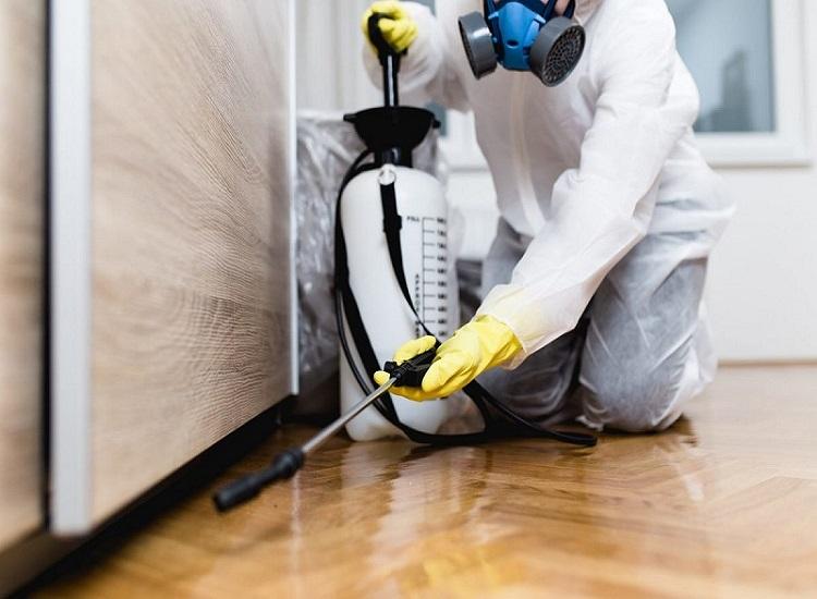 Professional Pest Control Pymble